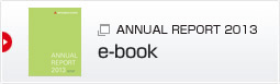 ANNUAL REPORT(ebook)